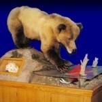 Bear and Salmon Taxidermy